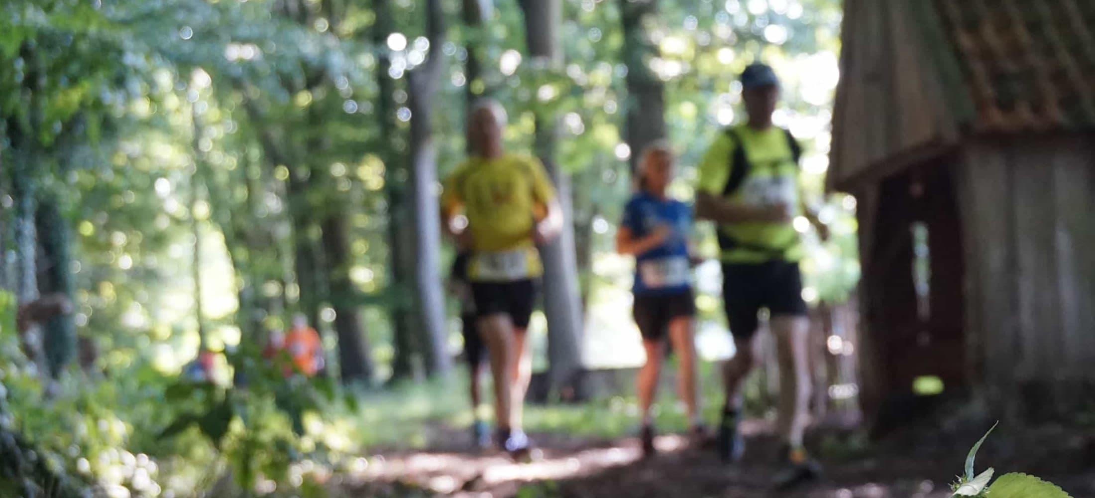 Marathon Nationaal Landschap Winterswijk